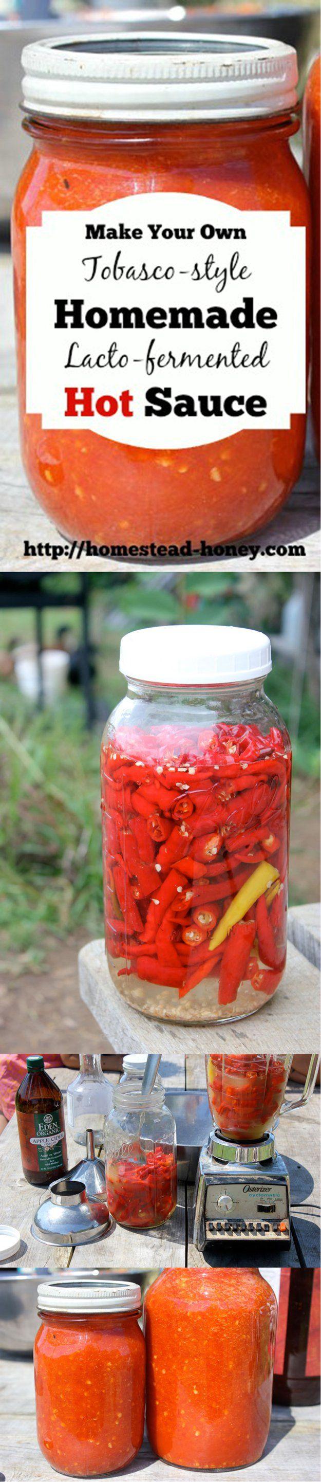 Homemade Receta Hot Sauce | http://artesaniasdebricolaje.ru/top-14-hot-sauce-recipes/