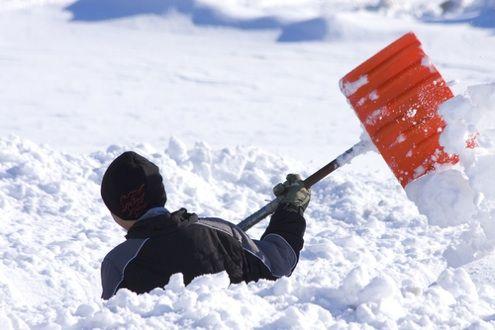 Fotografía - Top 5 Mensajes de la Semana: El conseguir listo para el invierno!