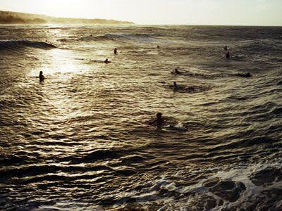 Atestado de surf