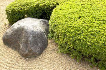 patio zen proyecto vivo al aire libre